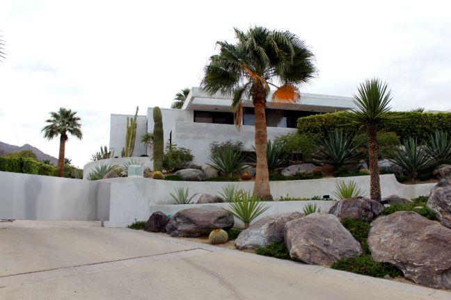 palm spring 2