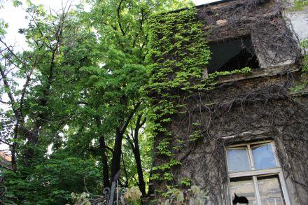BGD 8 Belgrade