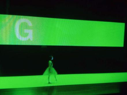 G for Gisele